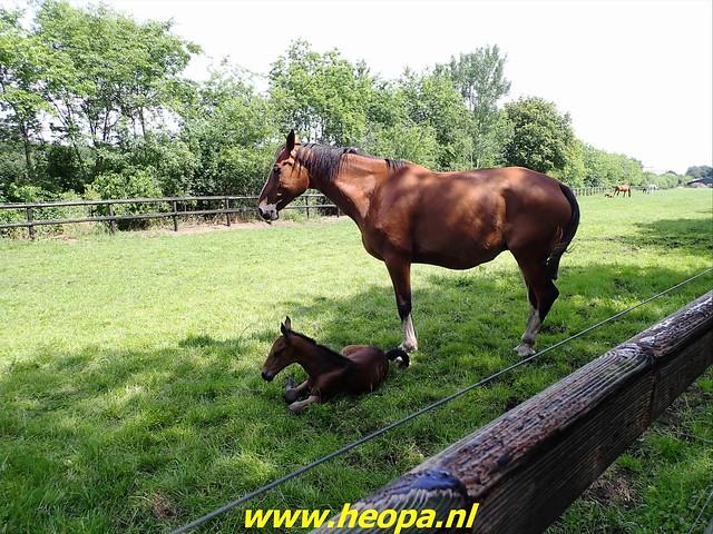 2021-07-09 Westerborkpad Meppel-Hoogeveen (64)