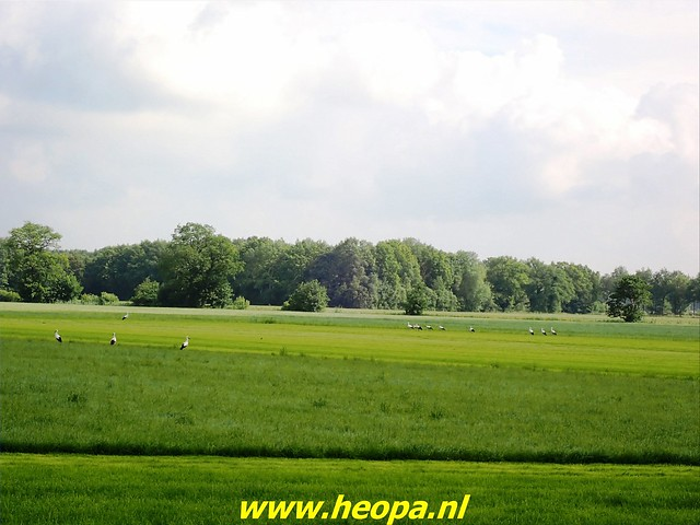 2021-07-09 Westerborkpad Meppel-Hoogeveen (43)