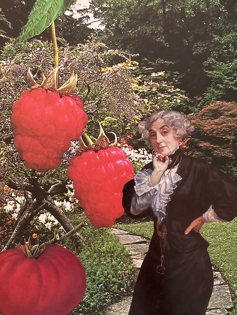 FIRST PRIZE WINNER: It was no surprise that Lady Lucille Luscious always placed first at the annual edible garden competition