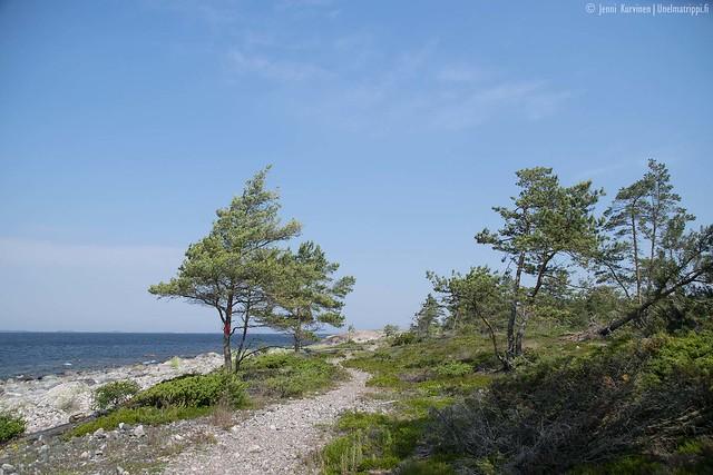 Kivinen polku Öröllä