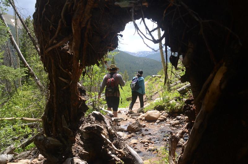 Hike Mount Parnassus (75)