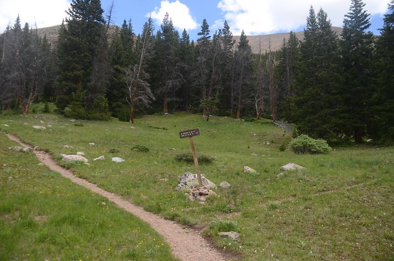 Bard Creek Trail intersection