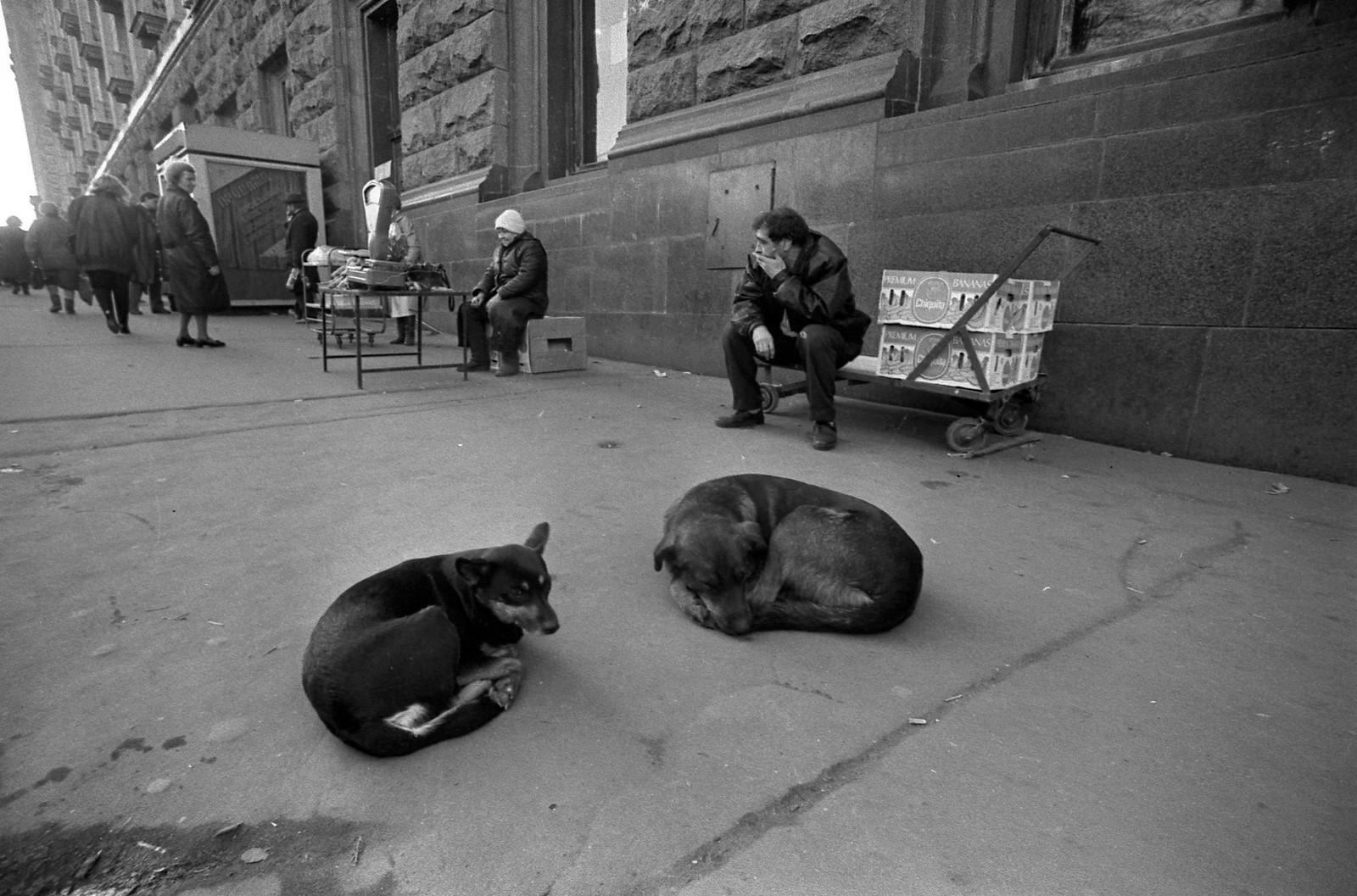 1985. Ломоносовский проспект