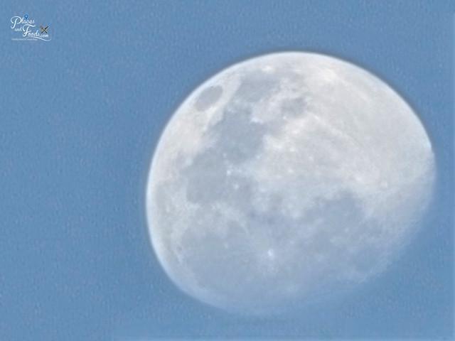 samsung s21 ultra blue moon
