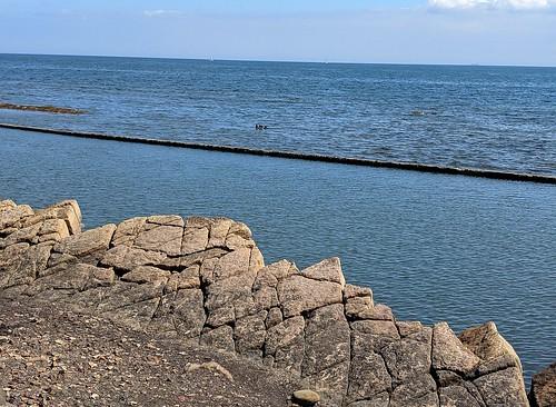St Monans rocks and pool , Fife