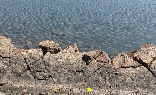 St Monans rocks, Firth of Forth, Fife