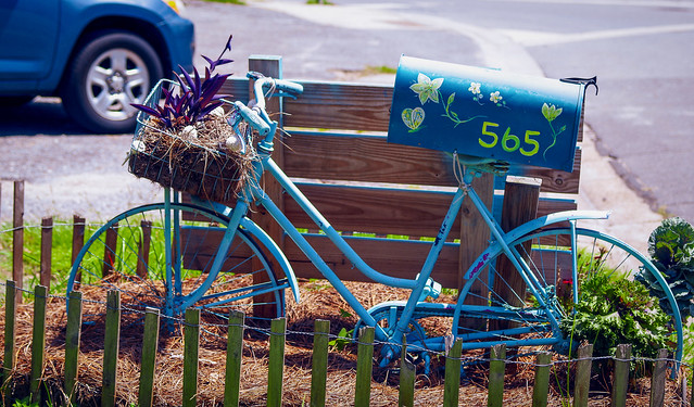 51308793796 869844b86e z Bicycle planter and mailbox all in one!