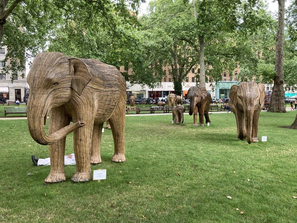 Elephants in Berkeley Square