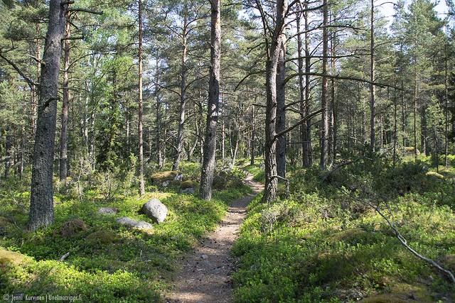 Metsäpolkua Örön saarella