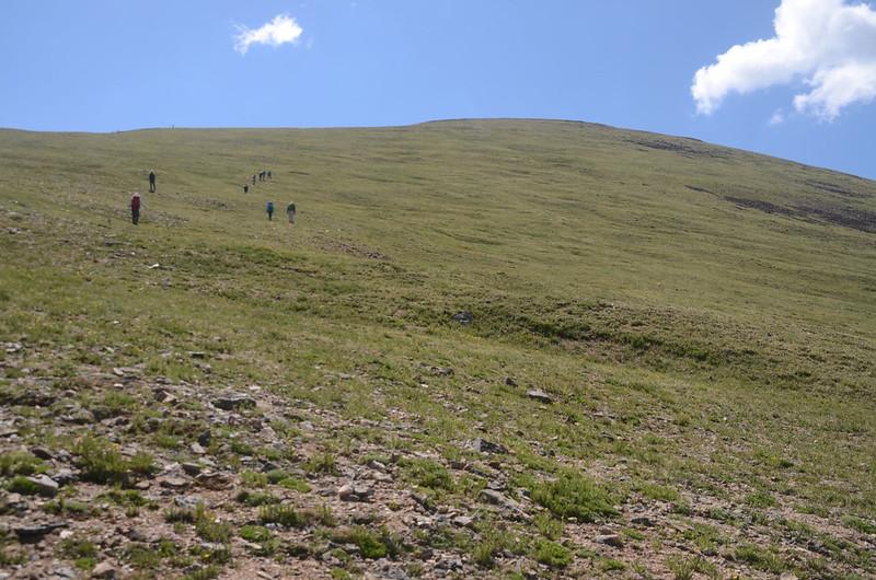 On the Parnassus-Woods saddle, looking toward the summit of Parnassus