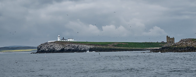 Farnes from a boat
