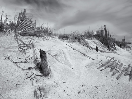 Dune fence down