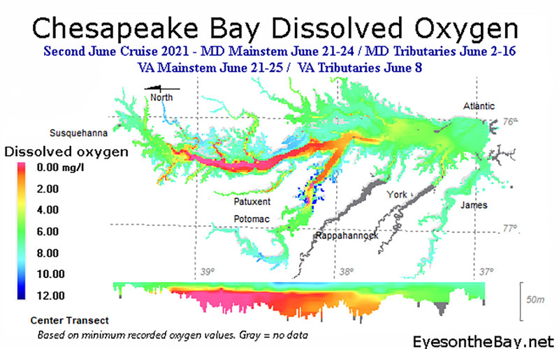 Map of Chesapeake Bay Dissolved Oxygen, late June 2021