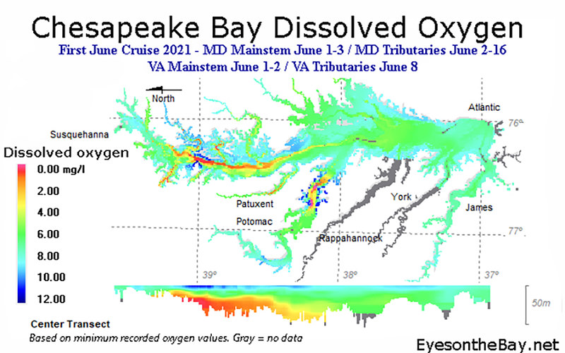 Map of Chesapeake Bay Dissolved Oxygen volumes, early June 2021