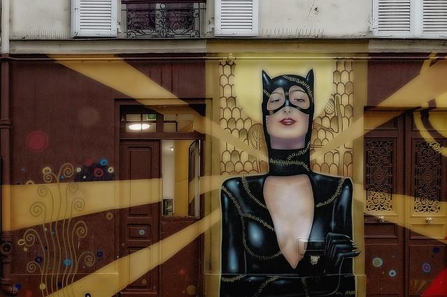 Catwoman par Max 132 et Monsieur Bonheur