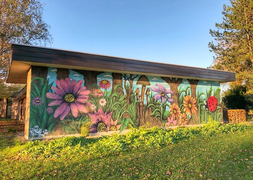 beautiful mural from artist Robbevm