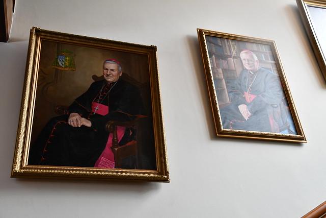Bishop David Portrait