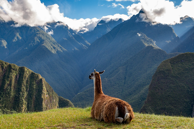 Armchair Traveling - Contemplating the Magnificence of Machu Picchu