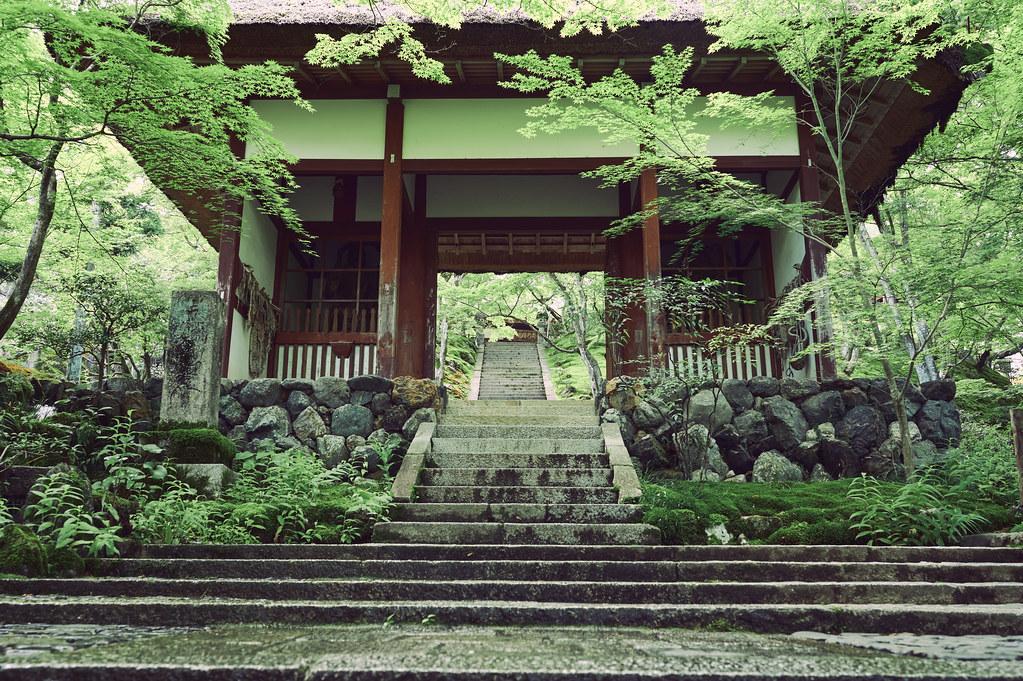 Kyoto Jojakko-ji Temple in Early Summer
