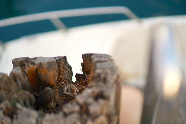 Boat handrail and rotting pylon