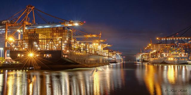 Containerhafen Waltershof - 20022102