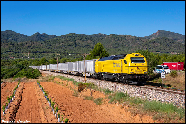 335-032 Azúcar Torres-Torres.