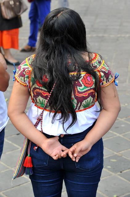 Chatino Blouse Oaxaca Mexico Woman