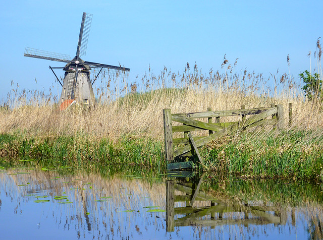 Windmill at Kinderdijk , The Netherlands (Unesco world heritage)