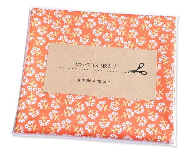 カットクロス Art Gallery Fabrics Open Heart Sweet Floret Peach