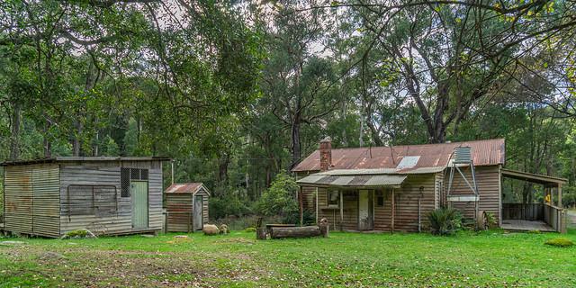 Bush Shack at Rubicon, Victoria