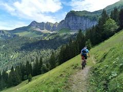 Choltal trail