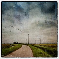 Conisholme Wind Farm