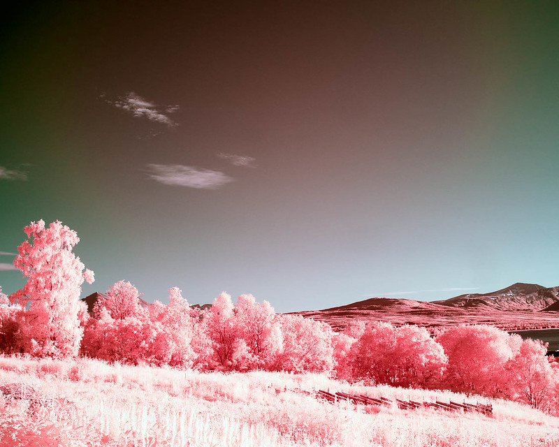 Infrared of the day 45