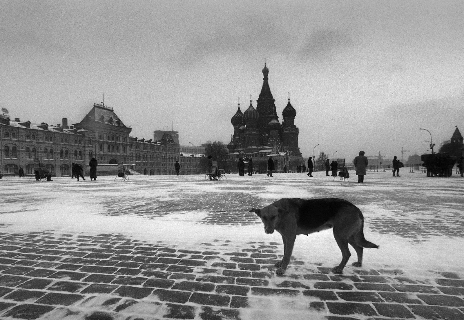 1993. Сука на Красной площади