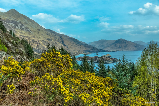 Loch Hourn, near Arnisdale with the lower top of Beinn Sgritheall on the left, Inverness-shire, Scotland.