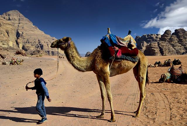 Wadi Rum near Bust of Lawrence of Arabia site - Jordan.