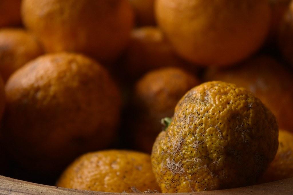 Korean fruit: a close up photo of yuzu