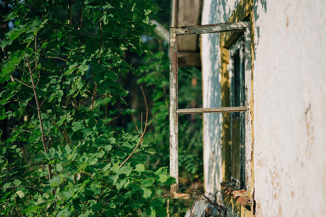 Countryside Walk / Window