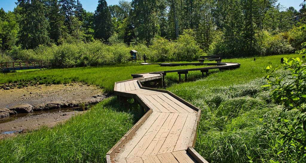 2021 - Vancouver - Port Moody - Shoreline Trail Boardwalk