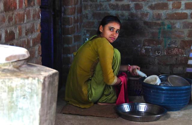 India- Gujarat- Poshina