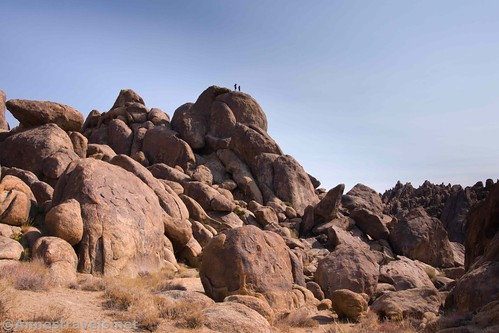 Two of my hiking companions high up on a rock, Alabama Hills National Scenic Area, California