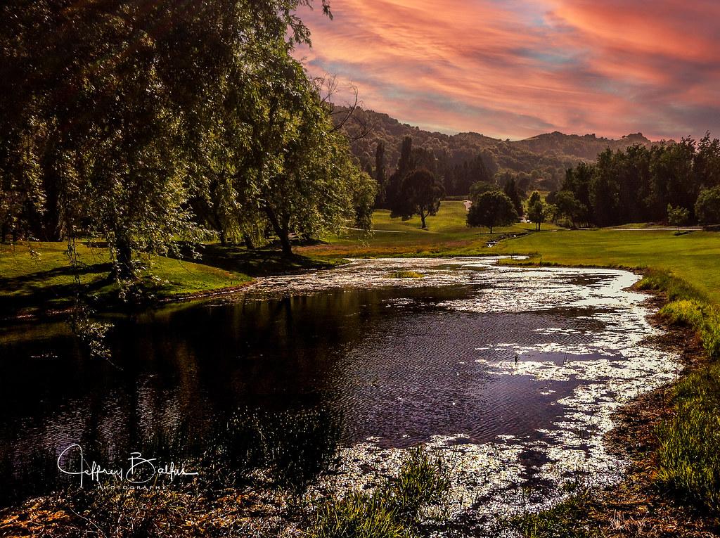 Moraga Pond  EXPLORE July 15, 2021 #141