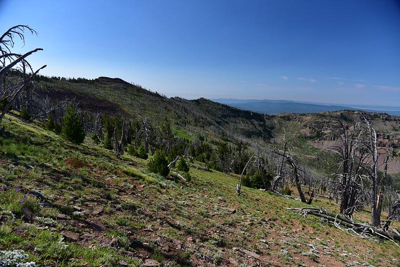 Strawberry Mountain hike