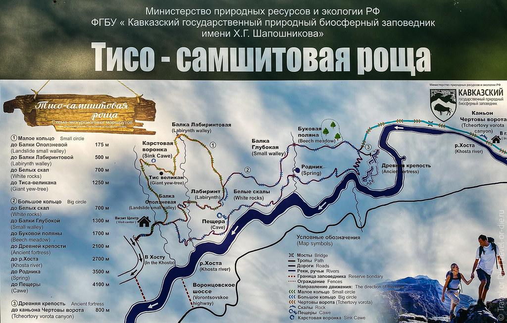 Тисосамшитовая-роща-Сочи-Khostinsky-Tisosamshitovaya-Grove---1717