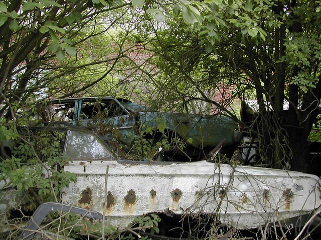 Forgotten Fords