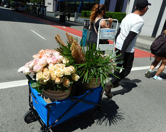 Refreshing the fresh flowers in the Fleurs de Ville: Rosé was a floral walk of various pinks, done in support of breast cancer research