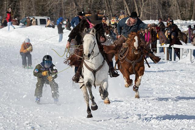 Skijor Canada 2020