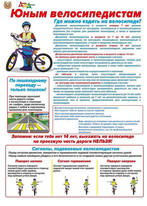 Соблюдение правил дорожного движения владельцами средств индивидуальной мобильности