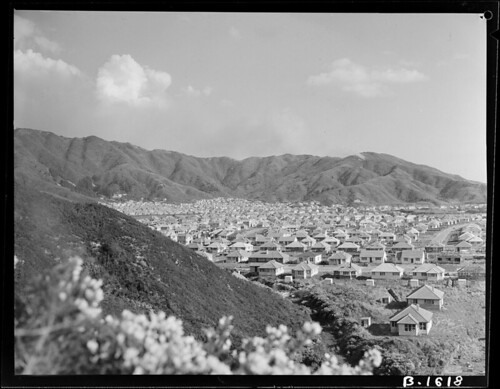 <p>On September 12 this photo of state houses in Naenae was taken by railways photographer J.F. Le Cren.<br /> <br /> Archives New Zealand Reference: AAVK 6390 B1618<br /> <br /> Material from Archives New Zealand Te Rua Mahara o te Kāwanatanga</p>
