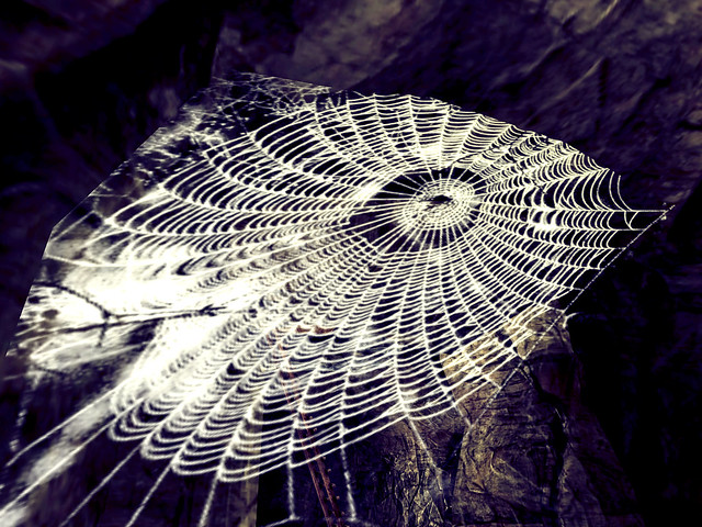 Lawst Paradise - The Spin of A Well Spun Web